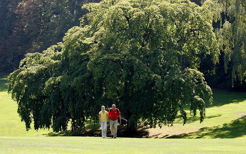 Golf Bad Gleichenberg